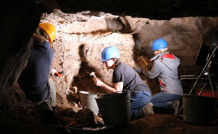 Ballynamintra Cave Excavation